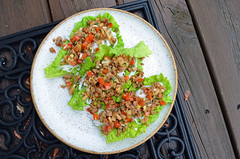 Spicy Ginger Pork Lettuce Wraps 04.22.17