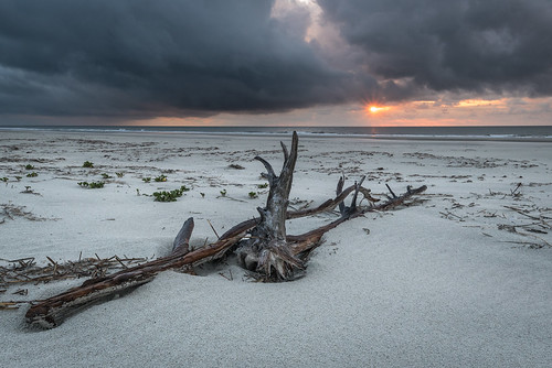 cumberlandisland georgia sunrise travel beach clouds driftwood sand storm sun chuckpalmer