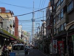 jap 2013 tokyo 026