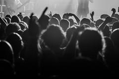 Crowding Pleasures