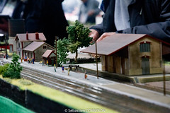 Salon du train miniature (4)