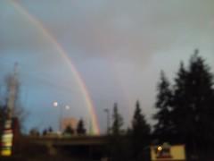 Rainbows an Cheery Trees 022