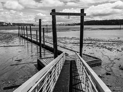 Beached Dock, Oak Harbor, Washington, Spring 2017 (iOS)