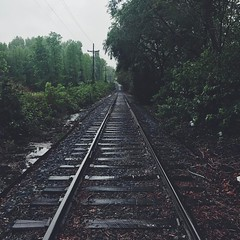 Follow the Tracks