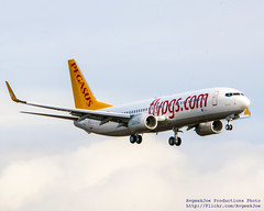 Pegasus 737-8H6(WL) Doing Missed Approach