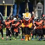 U11 Tigers vs. Dragons 14.5.17