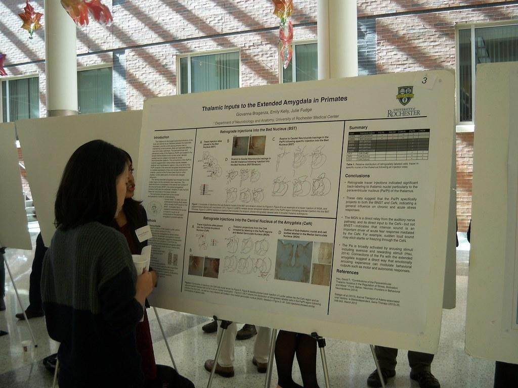 Giovanna Braganza explains poster to visitor