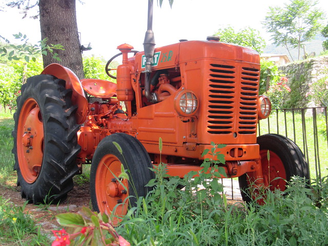 Mazzi Winery tractor, Canon POWERSHOT D30