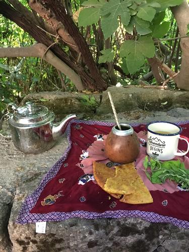 Traveling Tea Party at Pan's Creek