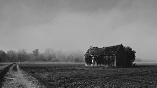 (The Old Barn) Morning Mist Edition
