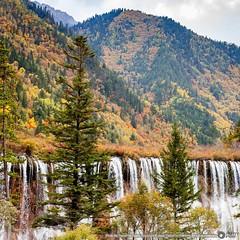 น้ำตกนั่วรื่อหลาง (Nuorilang Waterfall | 诺日朗瀑布) กว้างถึง 32 เมตร สูงถึง 25 เมตร ถือเป็นน้ำตกที่กว้างทีสุดในจิ่วจ้ายโกว นู่รื่อหลางเป็นภาษาธิเบตแปลว่า ยิ่งใหญ่และอัศจรรย์ ด้านบนของน้ำตกเป็นที่ราบ สายน้ำไหลลัดเลาะ ลงสู่พื้นด้านล่างเกิดเป็นน้ำตกที่สวยงาม  มี