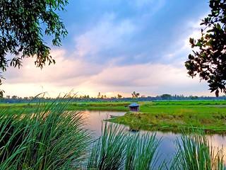 Sukanpur, Gubtoli, Bogra