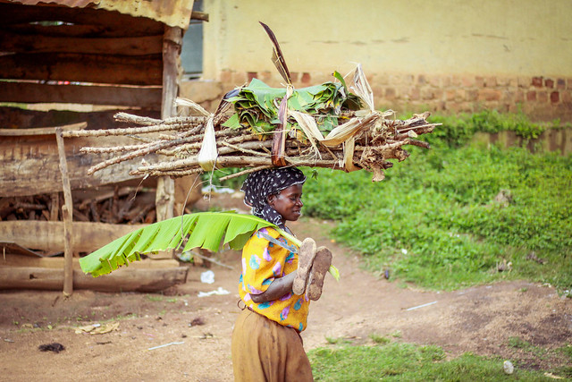 photo of woman carrying firewood