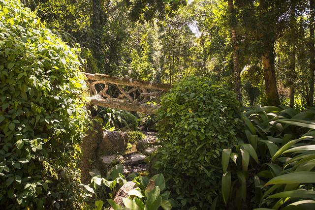 Parque Lage-Rio de Janeiro