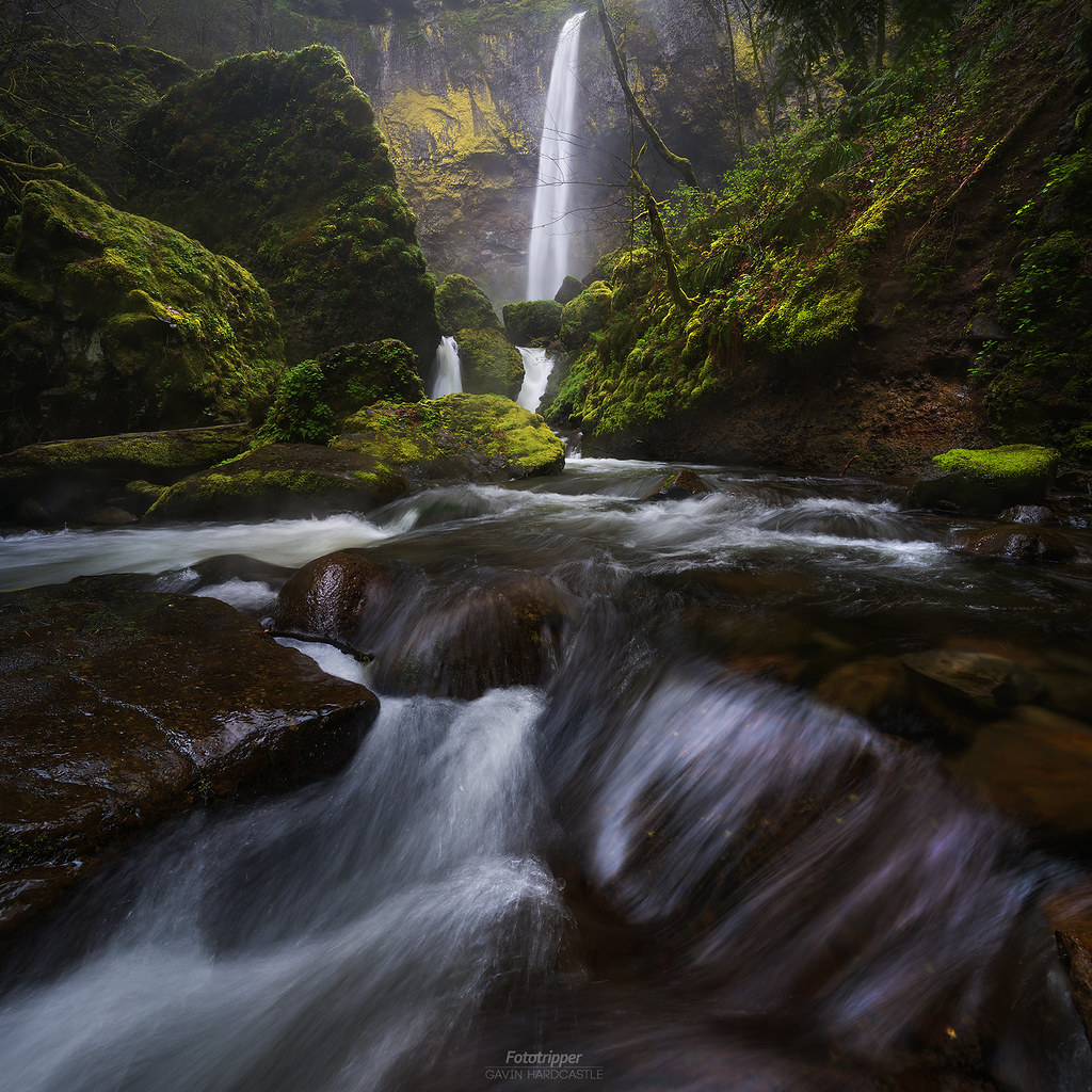 'Teardrop Explodes' - Elowah Falls, Columbia River Gorge