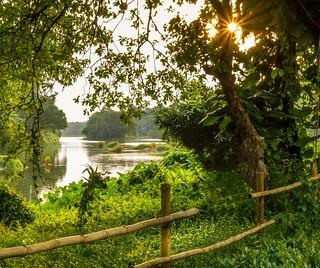 A Kerala riverside view