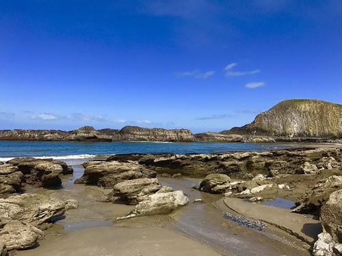 sealrock oregoncoast pacificocean ocean