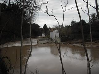 Parque de Oromana. Alcalá de Guadaíra (sevilla)