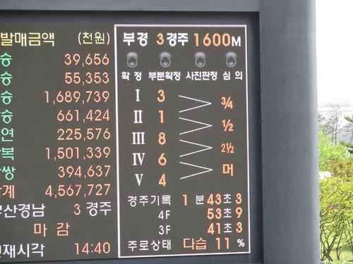 釜山慶南競馬場のレース結果
