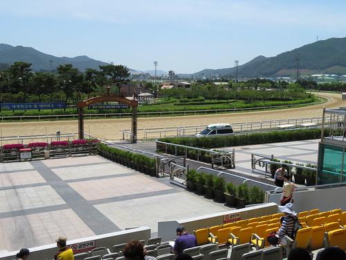 釜山慶南競馬場の本馬場入場のはなみち