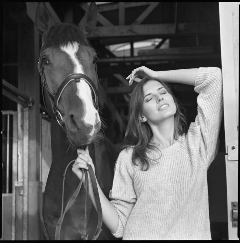 Horse Model Portrait