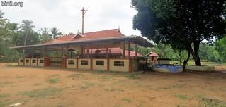 Sree Dharma Sastha Temple Murikkungal 3
