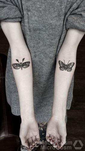 | Butterfly Tattoo