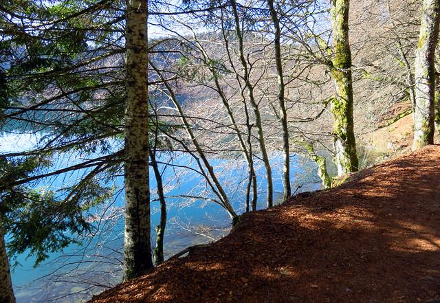 Auvernia.Lac Pavin. p41017 (710)