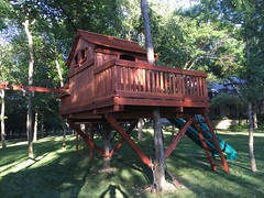 Tree House with Wrap Around Deck Bridged to Tree Deck Swing Set