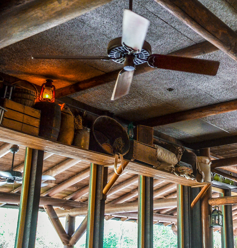 Trail's End fan and ceiling