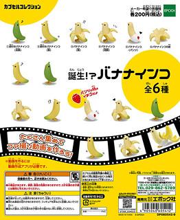 【官圖更新】大人氣鸚鵡轉蛋再登場~ 誕生?!香蕉鸚鵡~ 誕生!?バナナインコ