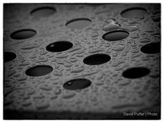 A gray and rainy day