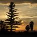 Querétaro Sunset II por C. B. Campbell