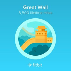 Earned this yesterday! #fitbit #fitbitchallenge #fitbitobsessed #fitbitstats #charge2 #nerdsupport #nerdfitness #popeacock #POPletics #fitnessgoals #fitness #health #stepobsessed