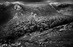 Monte de Pome, Cornión.