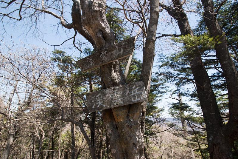 20150510-皇海山-0478.jpg
