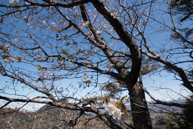 20150510-皇海山-0452.jpg