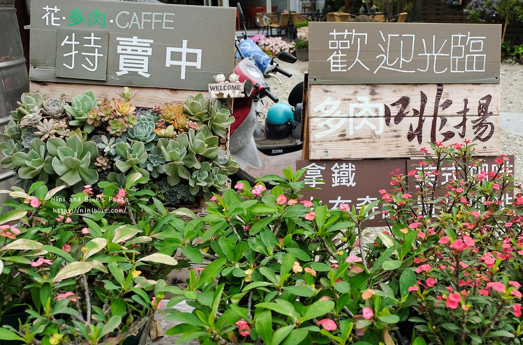 台中多肉啡場組盆咖啡01