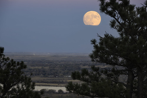 moon moonrise frostmoon beavermoon fullmoon pinusponderosa pine pineneedles bluehour clouds boulder bouldercounty southboulder highplains plains colorado supermoon