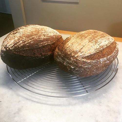 Volkorenbrood. Super lekker brood!