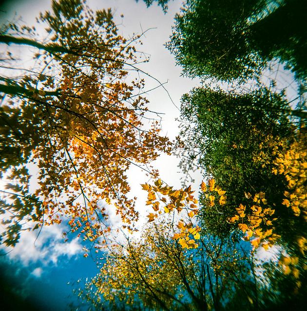 Il y a déjà longtemps, l'automne