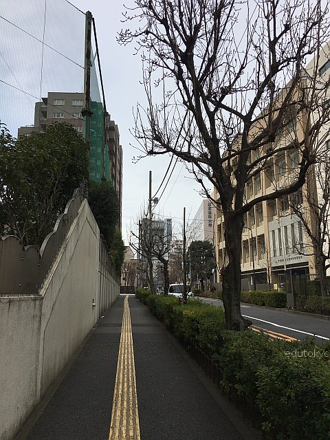 edutokyo_shirayuri_201702 (9)