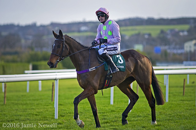 Douvan gallops back after claiming victory at Leopardstown