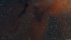 Dust and Gas in the Rho Ophiuchi Cloud Complex