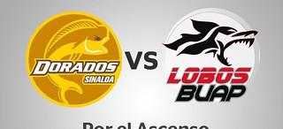 Se jugarán Lobos y Dorados el ascenso a la Liga MX entre miércoles y sábado (Video)