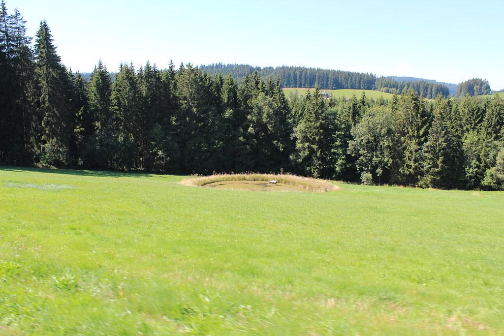 Musikreise Schwarzwald 2015