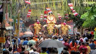 Thrissur Pooram 2017 - 02