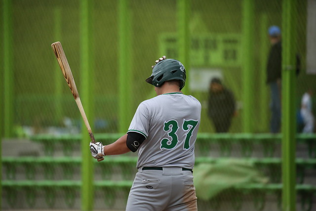 Sissach Frogs Baseball サムネイル