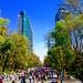 Chapultepec y Reforma