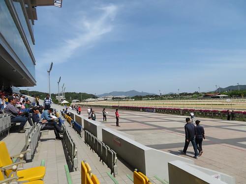釜山慶南競馬場の走路